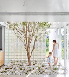 Biophilic Design In Architecture For Health & Tranquility